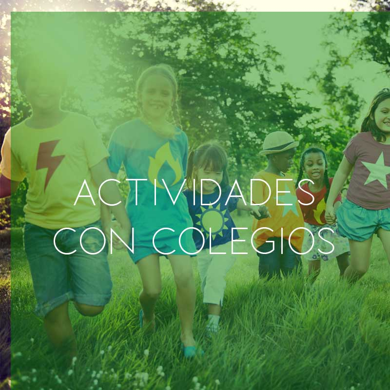 Actividades al aire libre con colegios | Retiro Magic Madrid